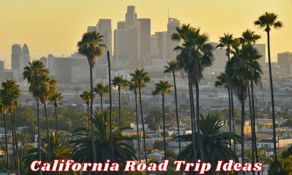 Road Trip Ideas And Tips