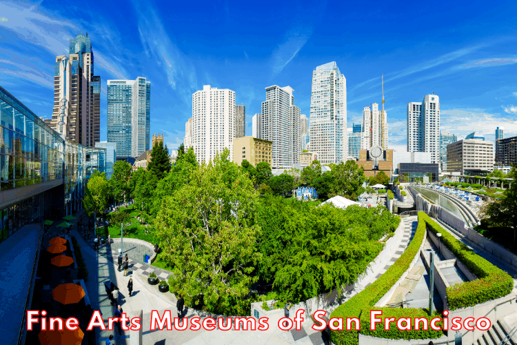 Fine Arts Museums of San Francisco - A Must See