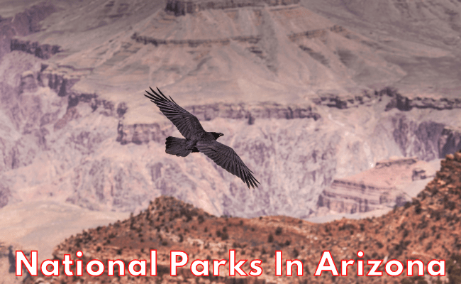Wonders You Must See In Your Life - National Parks Arizona