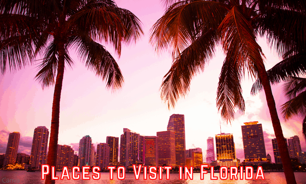 Places to Visit in Florida - The Gems of Florida