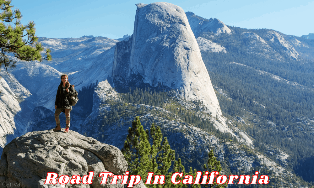 A Guide To A Great Road Trip