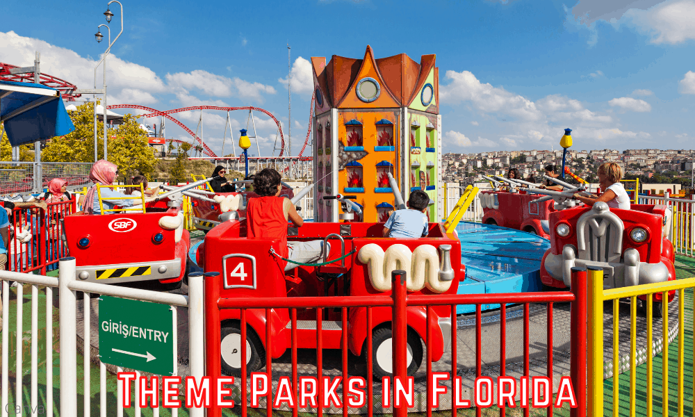 Fun for All the Family in Florida